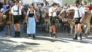 almabtrieb with farmer in traditional costume and spectators